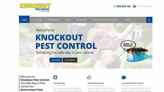 Knockout Pest Control Digital Marketing: SEM