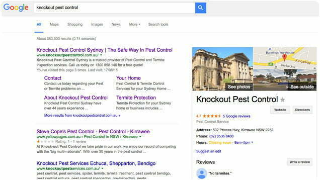 Knockout Pest Control Digital Marketing: SEARCH